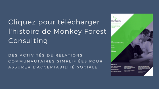 Monkey Forest Consulting histoire