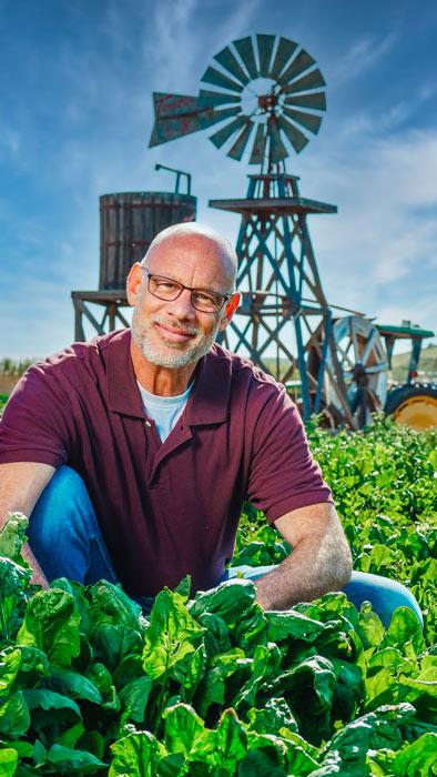 farmer-fields-lettuce-food-sector
