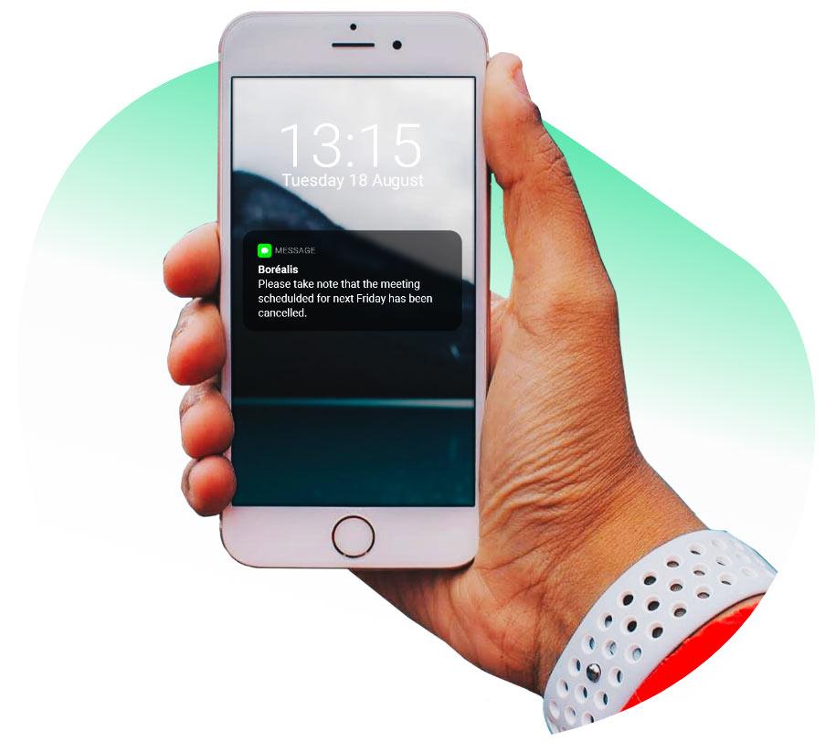 sms-functionality-borealis